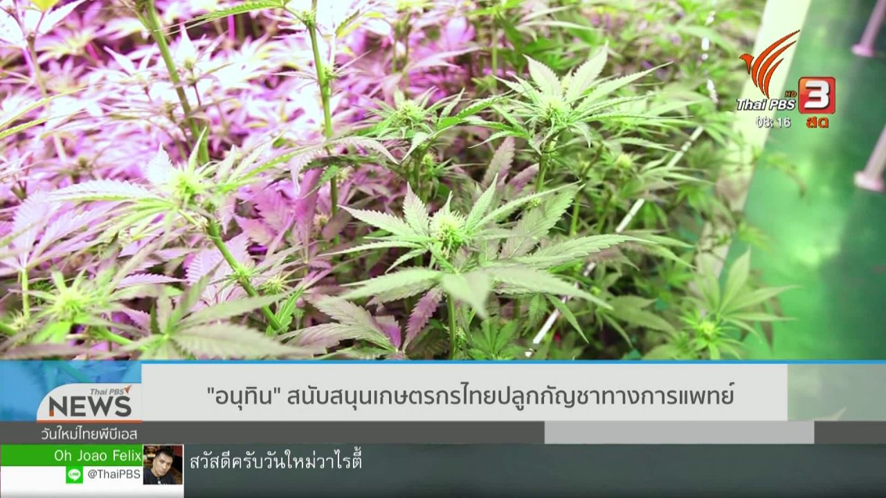 """วันใหม่วาไรตี้ - จับตาข่าวเด่น : """"อนุทิน"""" สนับสนุนเกษตรกรไทยปลูกกัญชาทางการแพทย์"""