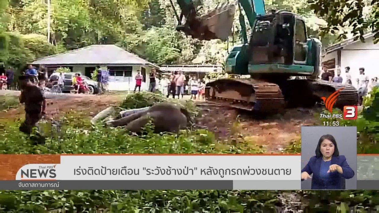 """จับตาสถานการณ์ - เร่งติดป้ายเตือน """"ระวังช้างป่า"""" หลังถูกรถพ่วงชนตาย"""