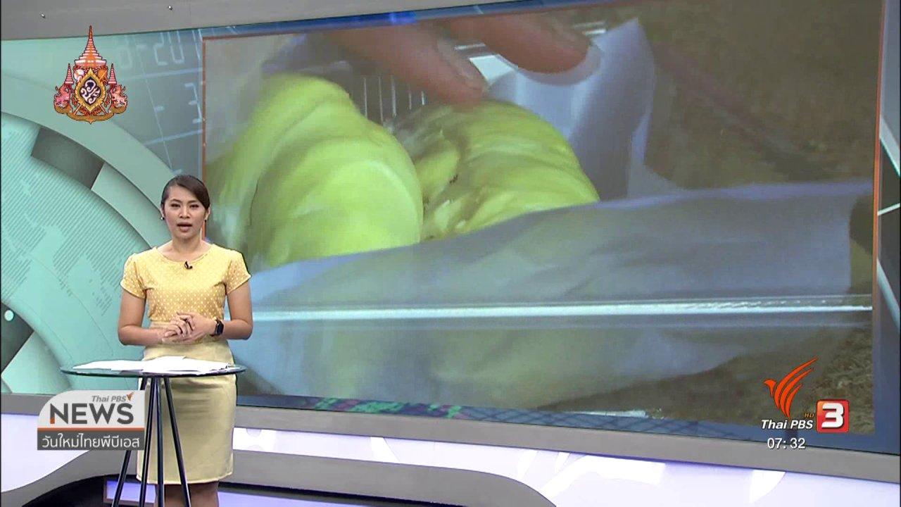 วันใหม่  ไทยพีบีเอส - ลงทุนทำกิน : ห่วงทุเรียนซ้ำรอยยางพารา