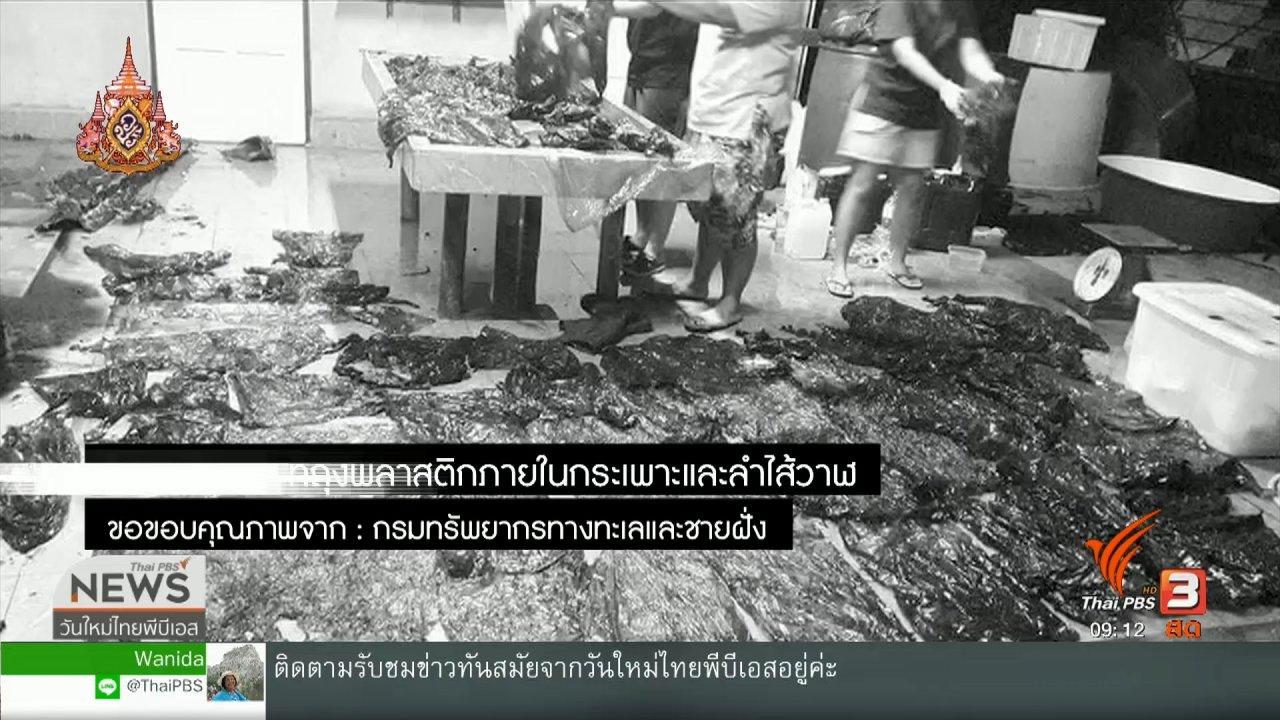 """วันใหม่  ไทยพีบีเอส - ประเด็นทางสังคม : """"พลาสติก"""" ภัยคุกคามจากขยะทะเล"""