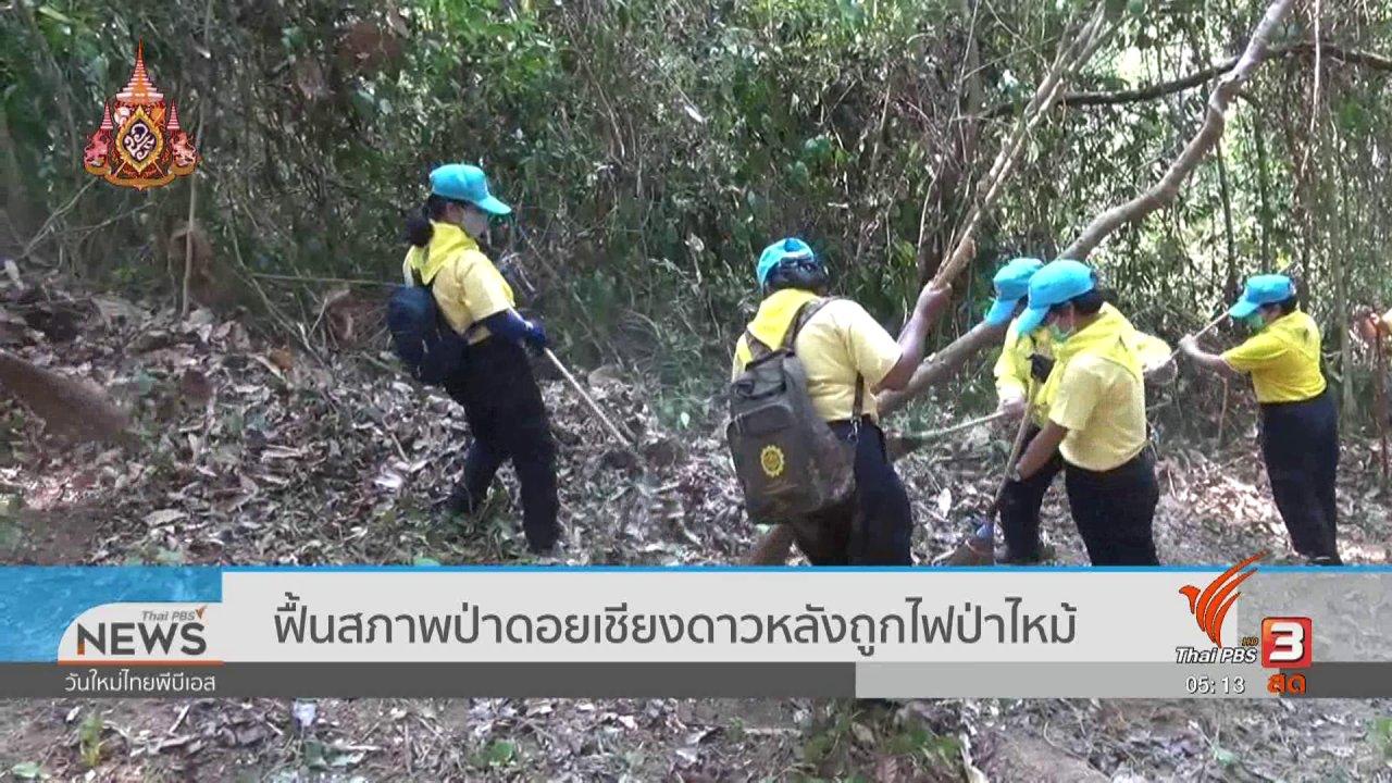 วันใหม่  ไทยพีบีเอส - ฟื้นสภาพป่าดอยเชียงดาวหลังถูกไฟป่าไหม้