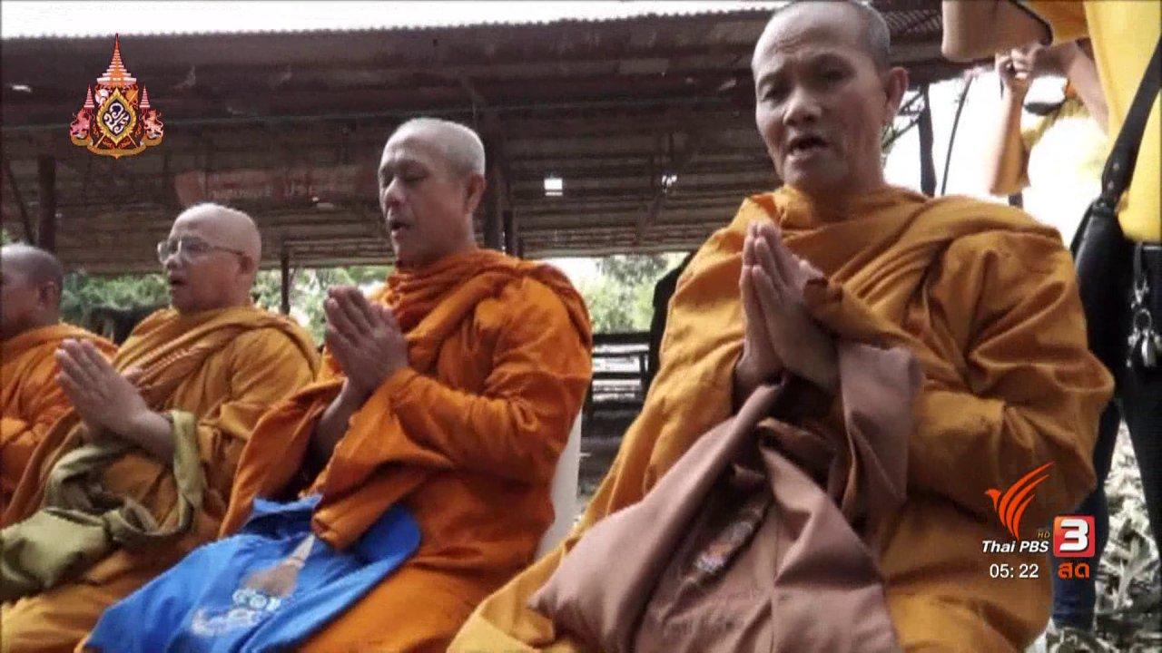 วันใหม่  ไทยพีบีเอส - เตรียมนำช้าง 11 เชือก ถวายพระพร