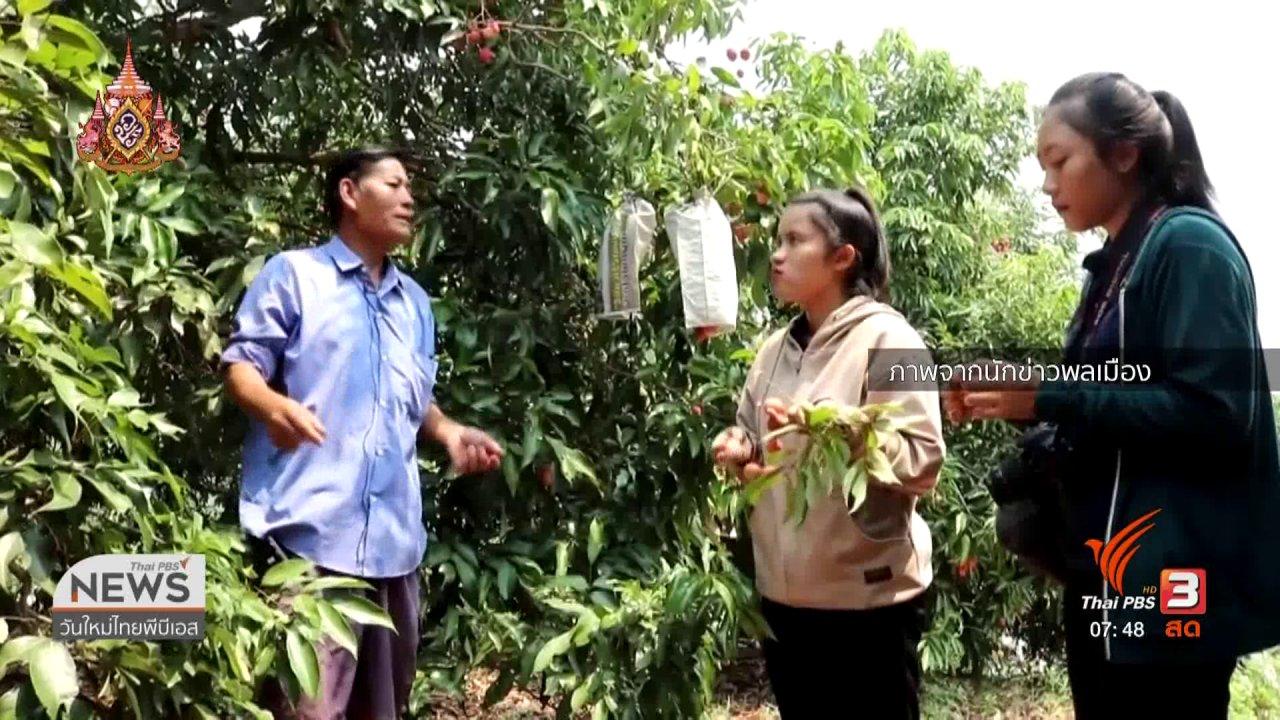 วันใหม่  ไทยพีบีเอส - C-site Report : อากาศร้อนกระทบผลผลิตการเกษตรภาคเหนือ