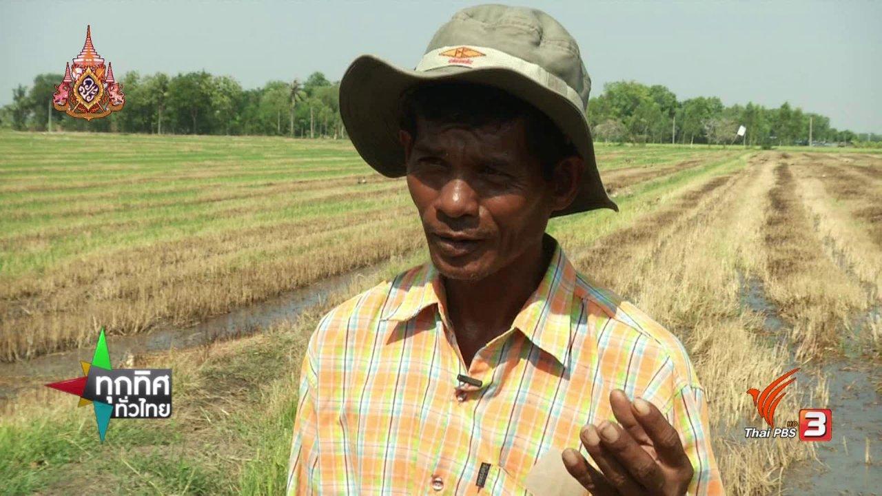 ทุกทิศทั่วไทย - ชุมชนทั่วไทย : เลี้ยงเป็ดไล่ทุ่งขายไข่สร้างรายได้