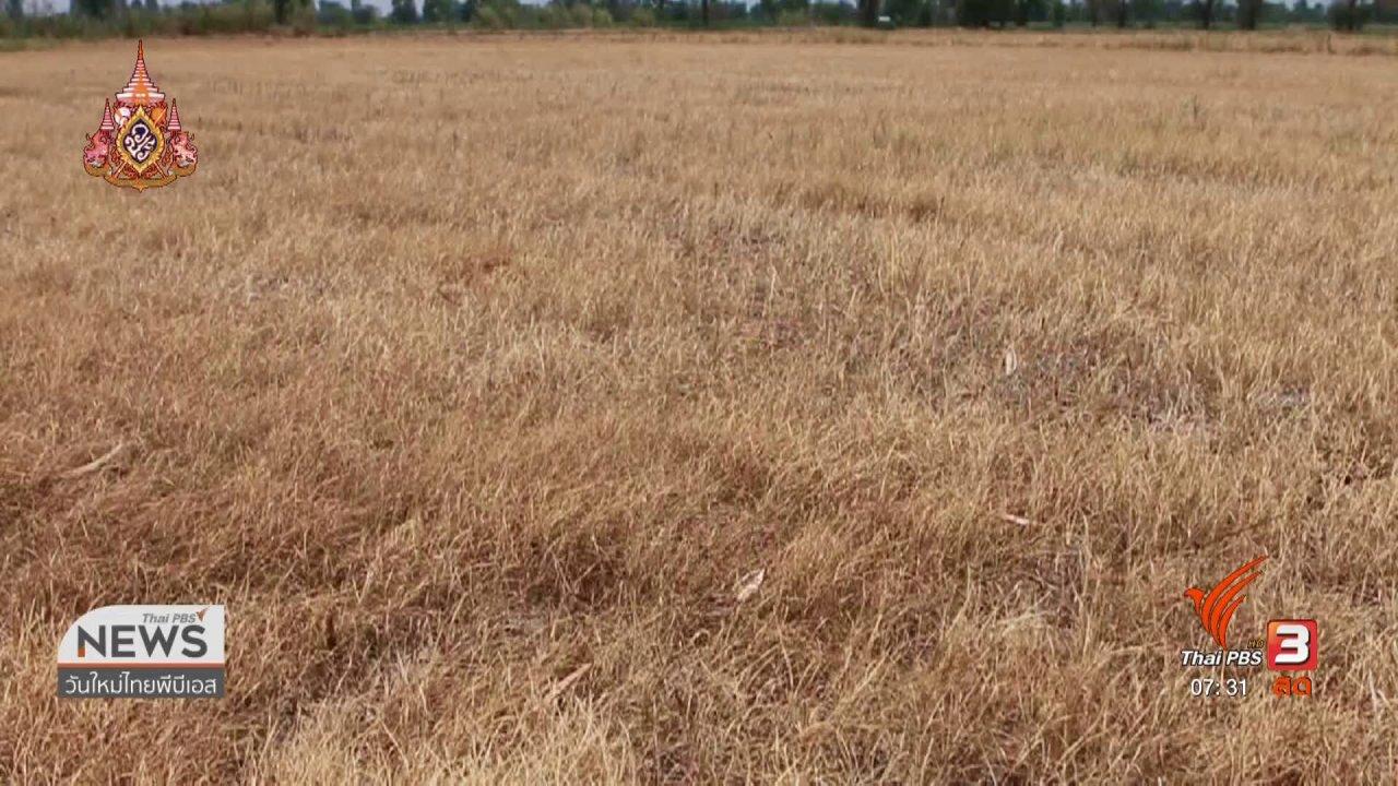 วันใหม่  ไทยพีบีเอส - ลงทุนทำกิน : ก.เกษตรฯ ชี้ภัยแล้งกระทบเศรษฐกิจ 180 ล้านบาท