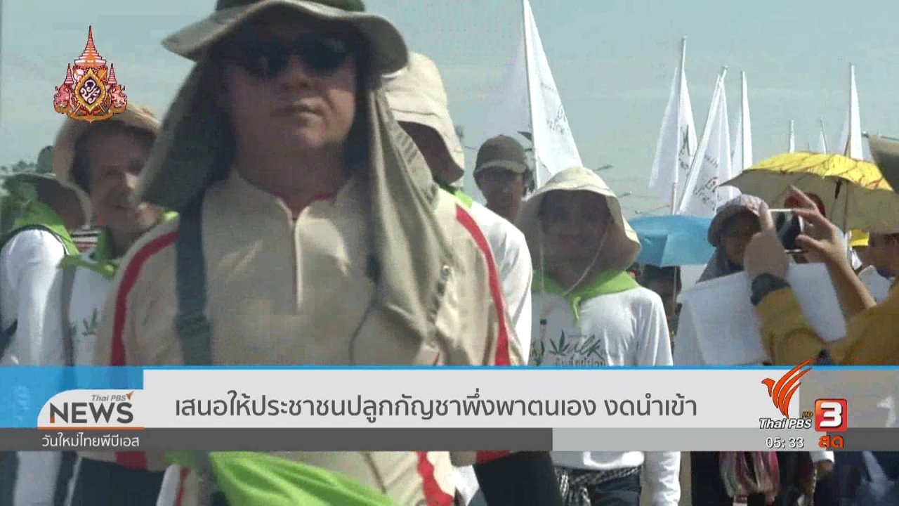 วันใหม่  ไทยพีบีเอส - เสนอให้ประชาชนปลูกกัญชาพึ่งพาตนเอง งดนำเข้า