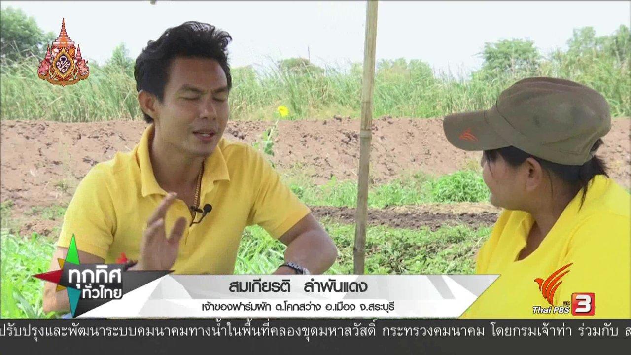ทุกทิศทั่วไทย - อาชีพทั่วไทย : ปลูกผักมาตรฐานส่งขายสร้างรายได้