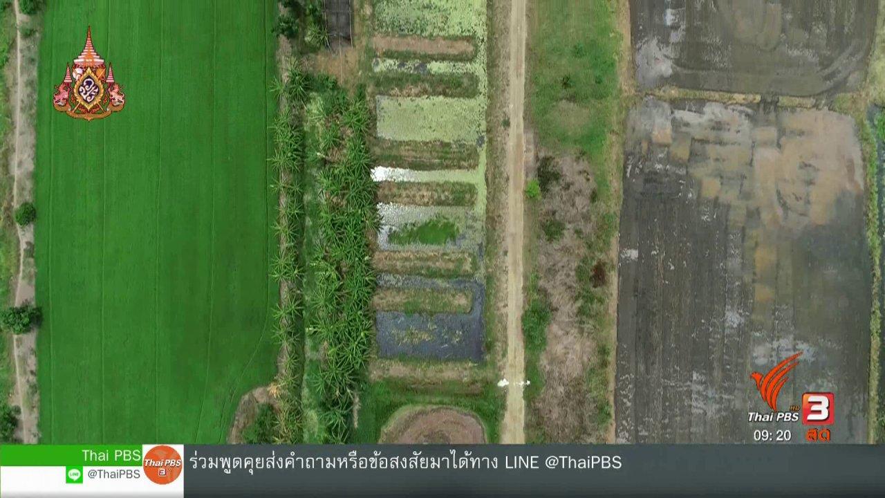 วันใหม่วาไรตี้ - ประเด็นทางสังคม : ฟาร์มสร้างสุขรามาธิบดี เกษตรอินทรีย์เพื่อประชาชน