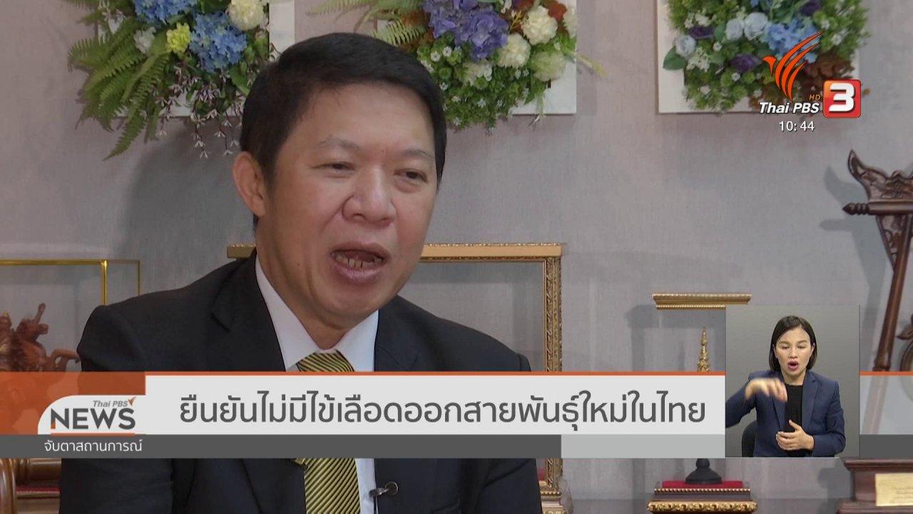 จับตาสถานการณ์ - ยืนยันไม่มีไข้เลือดออกสายพันธุ์ใหม่ในไทย