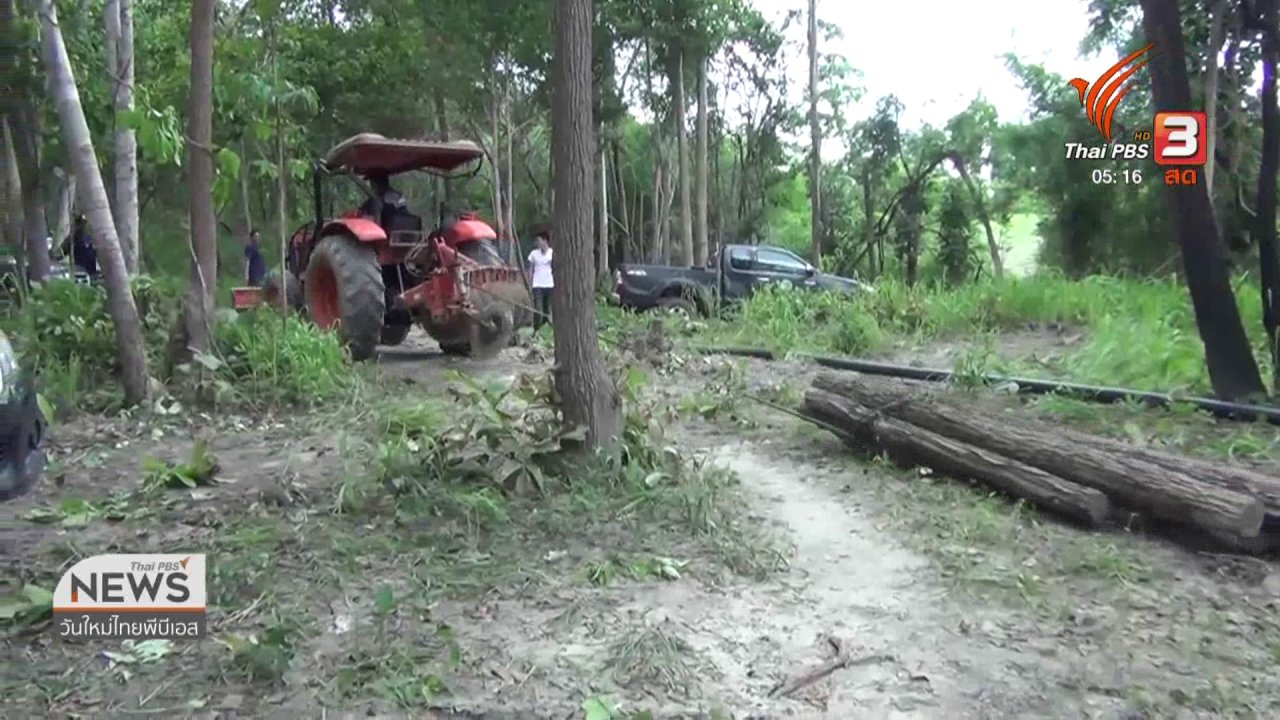วันใหม่  ไทยพีบีเอส - ยึดไม้ลักลอบตัดจากป่าสงวนแม่ต๋า แม่มาย จ.ลำปาง