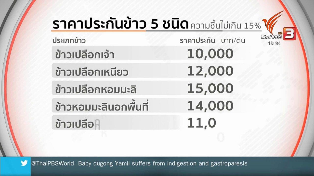 ข่าวค่ำ มิติใหม่ทั่วไทย - นบข.เห็นชอบประกันราคาข้าว 40 ไร่/ครัวเรือน