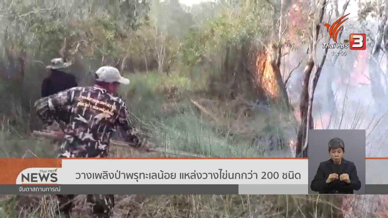 จับตาสถานการณ์ - วางเพลิงป่าพรุทะเลน้อย แหล่งวางไข่นกกว่า 200 ชนิด