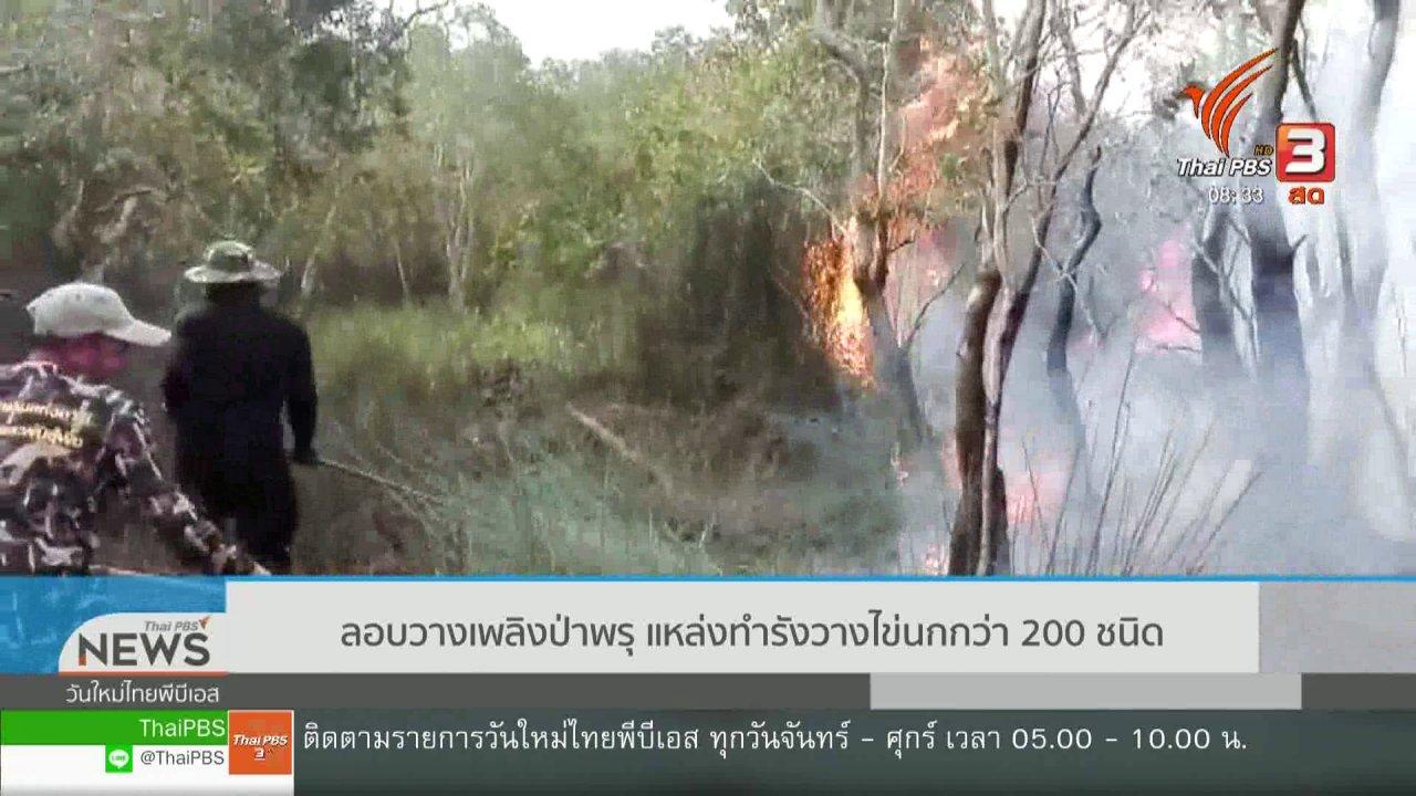 วันใหม่วาไรตี้ - เกาะติดประเด็นร้อน : ลอบวางเพลิงป่าพรุ แหล่งทำรังวางไข่นกกว่า 200 ชนิด