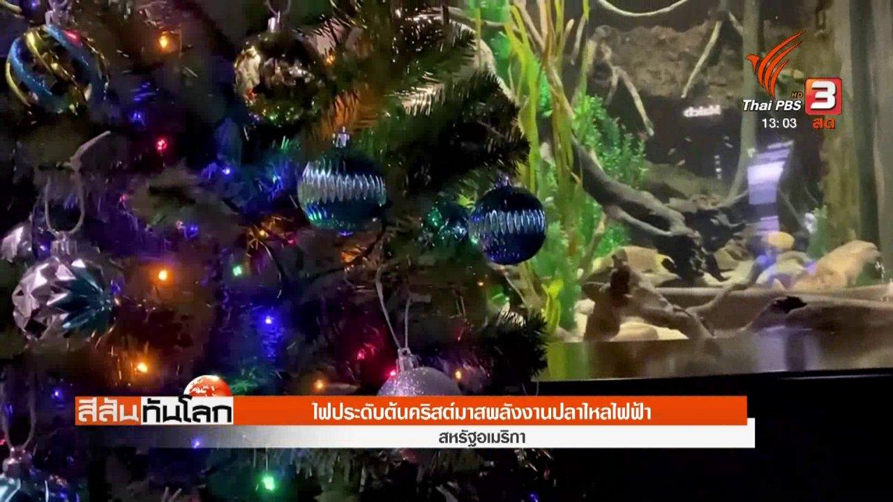 สีสันทันโลก - ไฟประดับต้นคริสต์มาสพลังงานปลาไหลไฟฟ้า