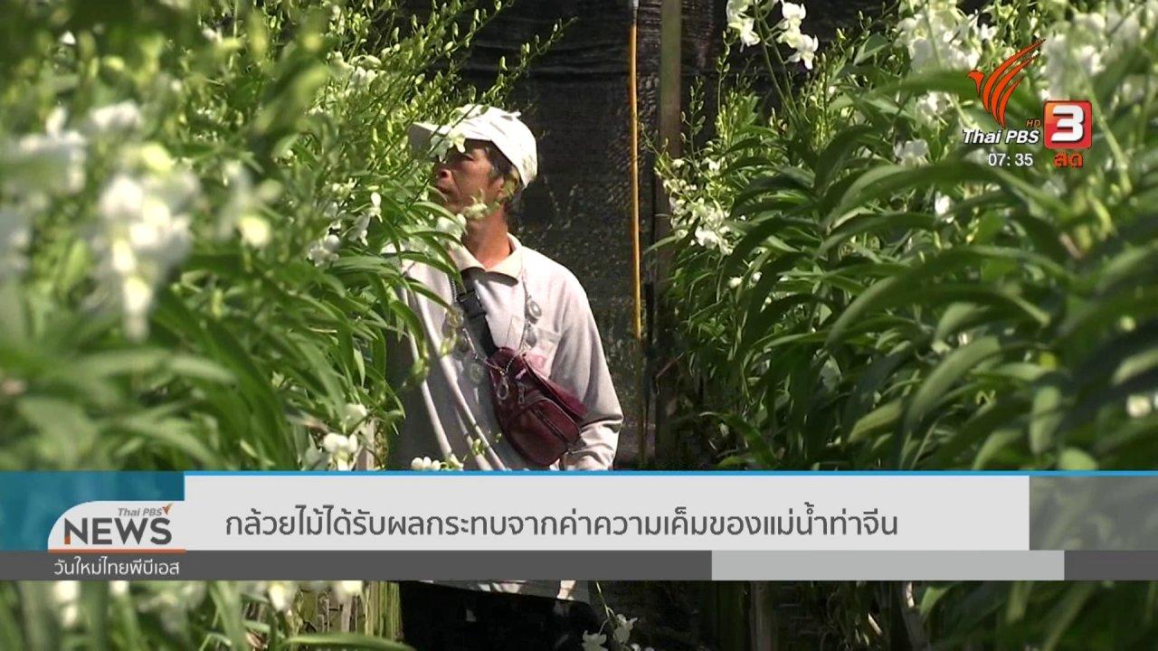วันใหม่  ไทยพีบีเอส - ทำมาหากิน ดินฟ้าอากาศ : กล้วยไม้ได้รับผลกระทบจากค่าความเค็มของแม่น้ำท่าจีน