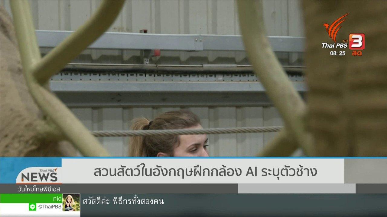 วันใหม่วาไรตี้ - จับตาข่าวเด่น : สวนสัตว์ในอังกฤษฝึกกล้อง AI ระบุตัวช้าง
