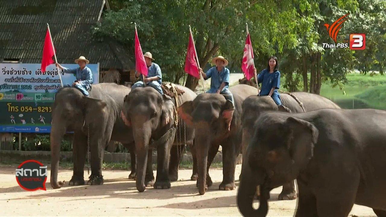 สถานีประชาชน - เรียนรู้วิถีชีวิตควาญช้าง ศูนย์อนุรักษ์ช้างไทย จ.ลำปาง