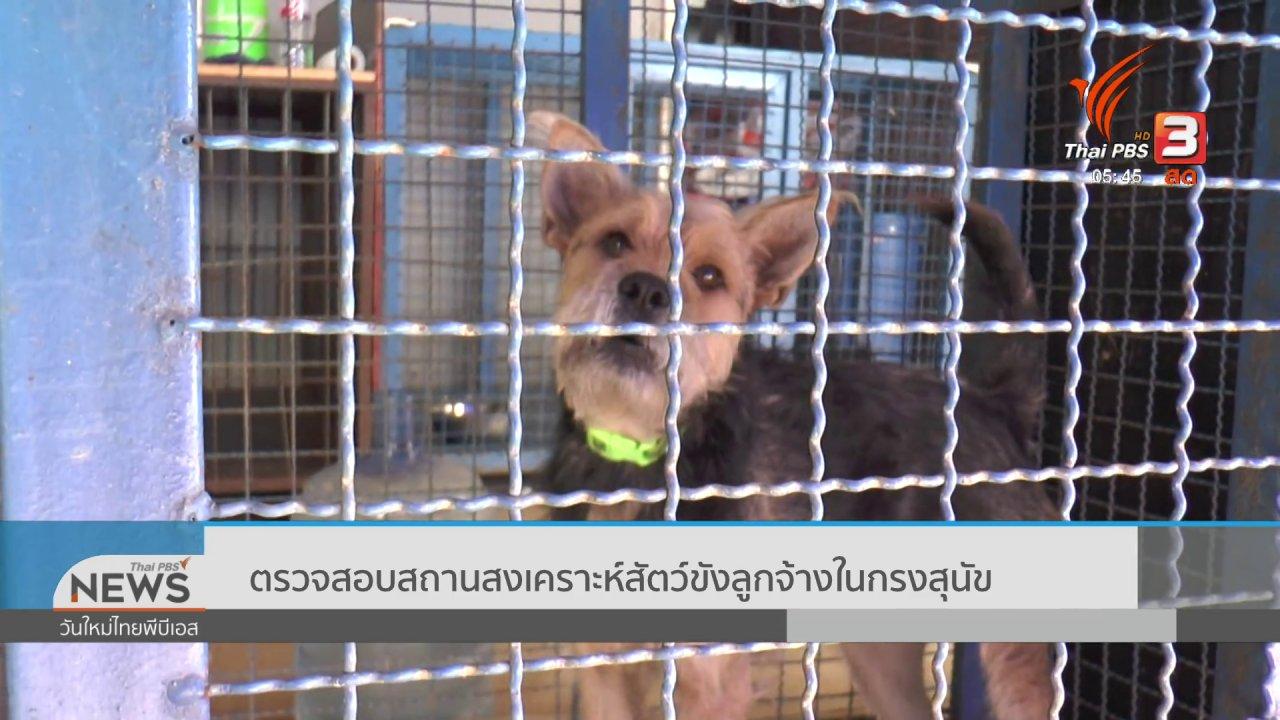 วันใหม่  ไทยพีบีเอส - ตรวจสอบสถานสงเคราะห์สัตว์ขังลูกจ้างในกรงสุนัข