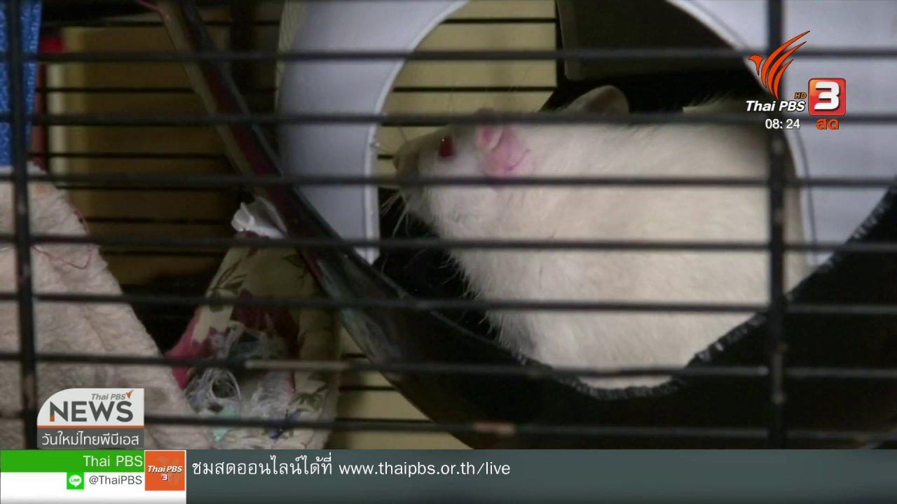 วันใหม่วาไรตี้ - จับตาข่าวเด่น : หาบ้านให้สัตว์ทดลอง