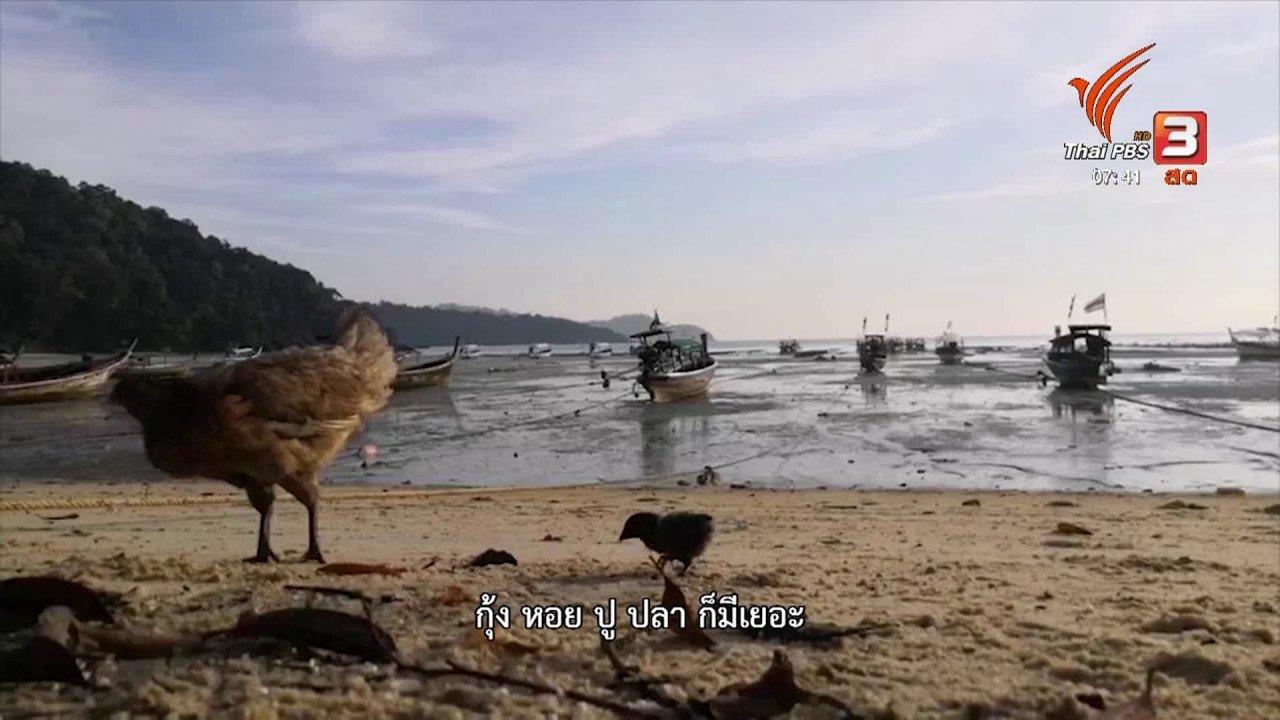 วันใหม่  ไทยพีบีเอส - C-site Report : มอแกน ความกังวลกลางทะเล