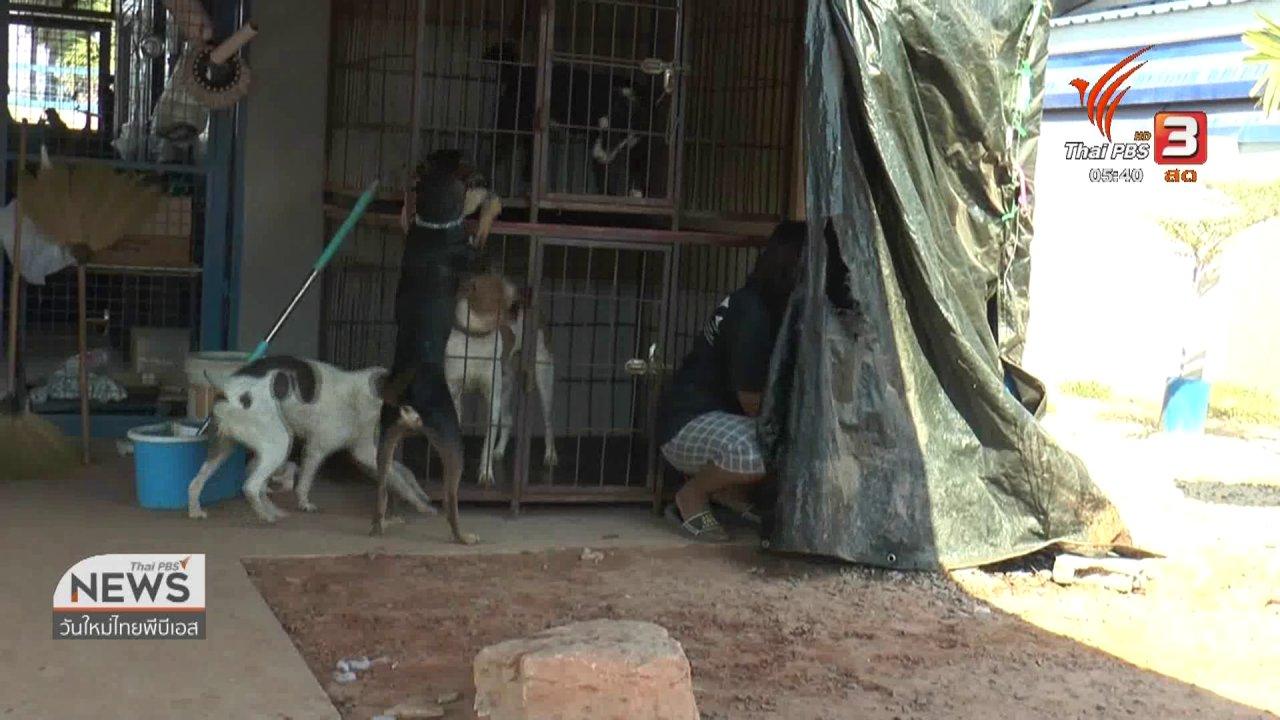วันใหม่  ไทยพีบีเอส - ชี้แจงไม่ได้ขังลูกจ้างในกรงหมาและทารุณกรรมสัตว์