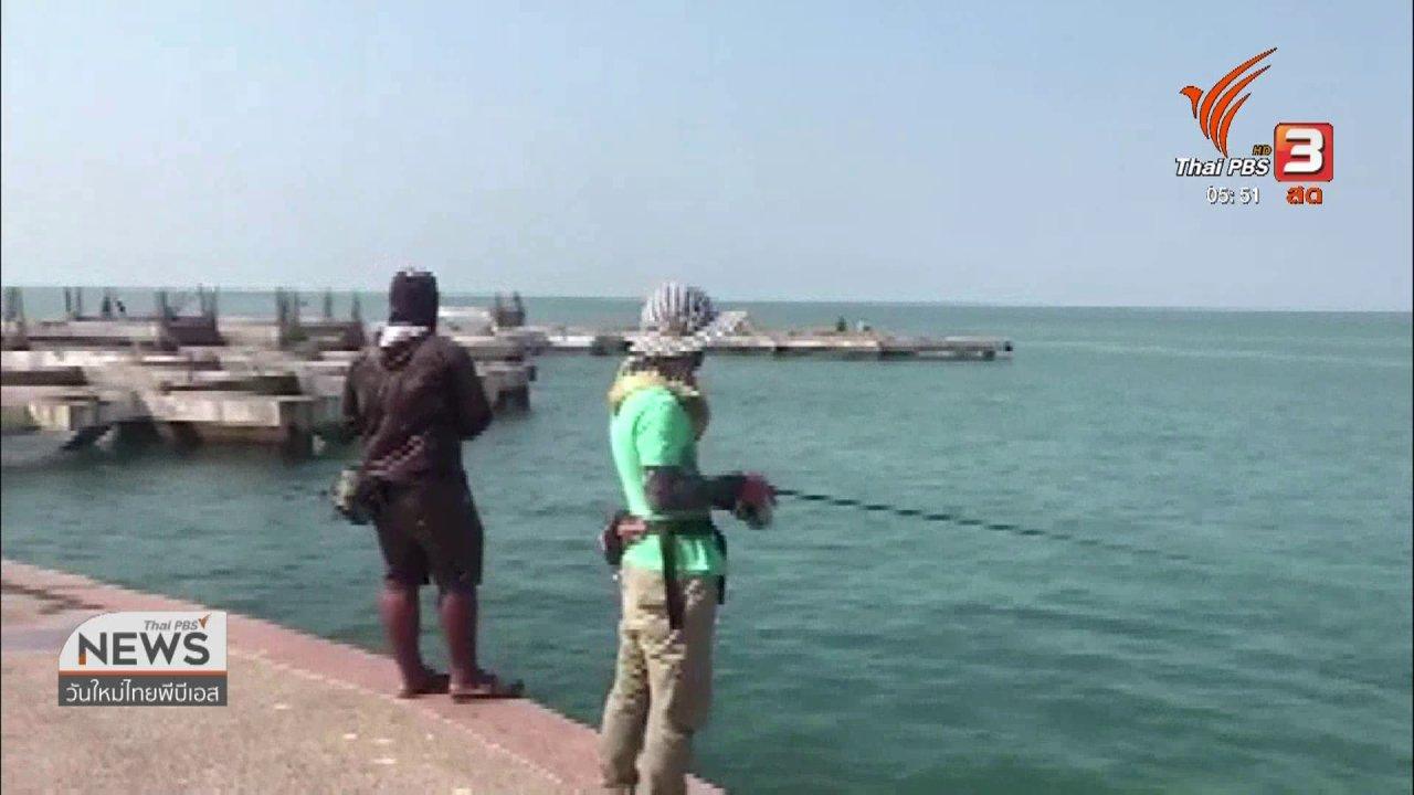 วันใหม่  ไทยพีบีเอส - ตรวจสอบฉลามชายหาดบางแสน จ.ชลบุรี