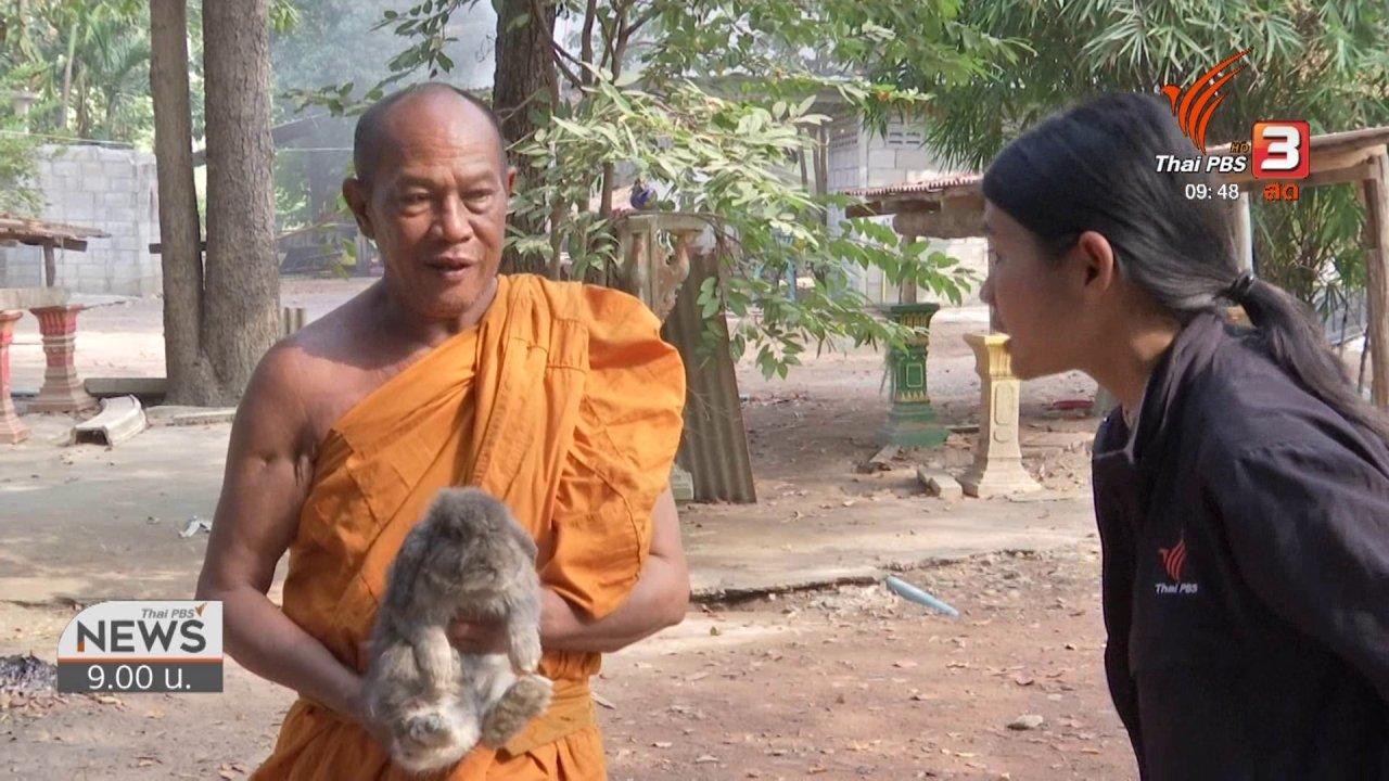 ข่าว 9 โมง - ชีวิตติดดิน : บ้านกระต่าย ศาลพระภูมิเก่า วัดทุ่งน้อย ราชบุรี