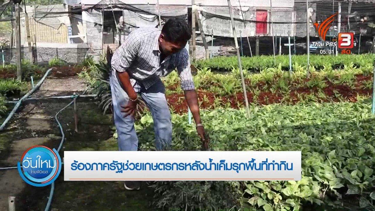 วันใหม่  ไทยพีบีเอส - ร้องภาครัฐช่วยเกษตรกรหลังน้ำเค็มรุกพื้นที่ทำกิน