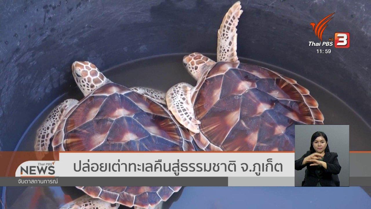 จับตาสถานการณ์ - ปล่อยเต่าทะเลคืนสู่ธรรมชาติ จ.ภูเก็ต