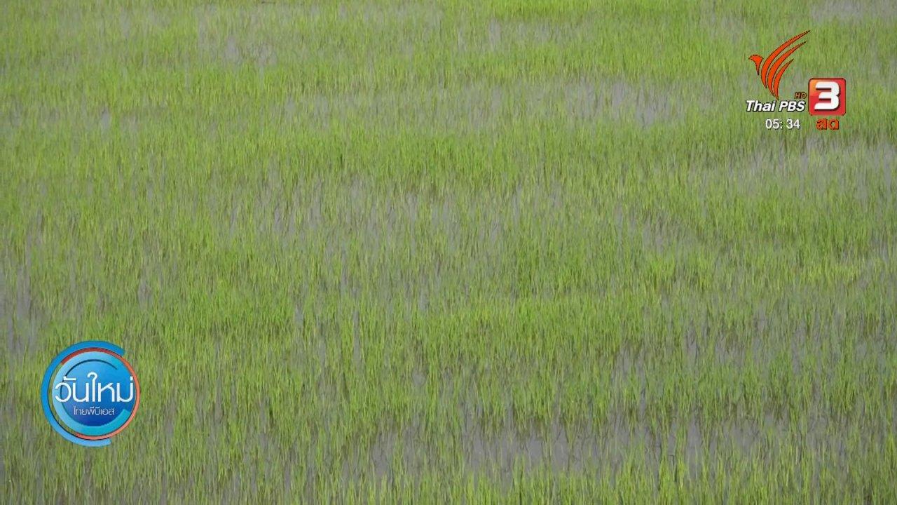 วันใหม่  ไทยพีบีเอส - เร่งเยียวยาเกษตรกรประสบปัญหาภัยแล้ง