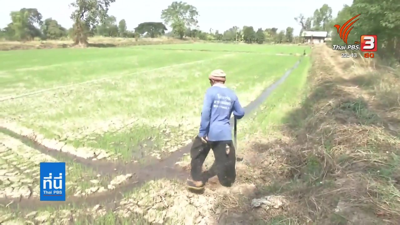 ที่นี่ Thai PBS - แผนจัดการน้ำเขื่อนลำปาว ช่วยวิกฤตภัยแล้ง