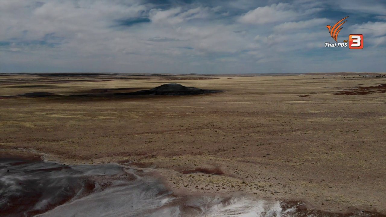 A Life on the Road  ถนน คน ชีวิต - เรื่องเล่าการเดินทาง : มรสุมในทะเลทราย