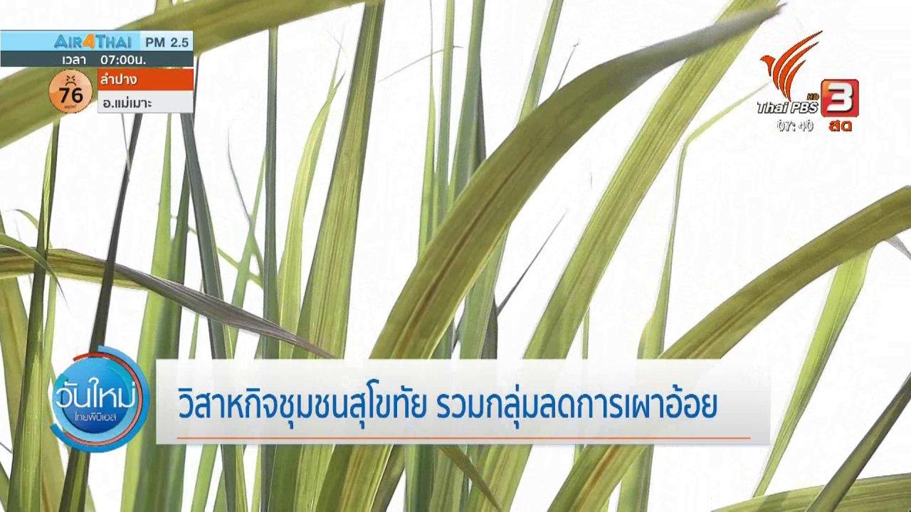 วันใหม่  ไทยพีบีเอส - ทำมาหากิน ดินฟ้าอากาศ : วิสาหกิจชุมชนสุโขทัย รวมกลุ่มลดการเผาอ้อย