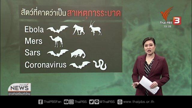 จีนสั่งห้ามค้าสัตว์ป่า ป้องกันการแพร่ระบาดไวรัสโคโรนา