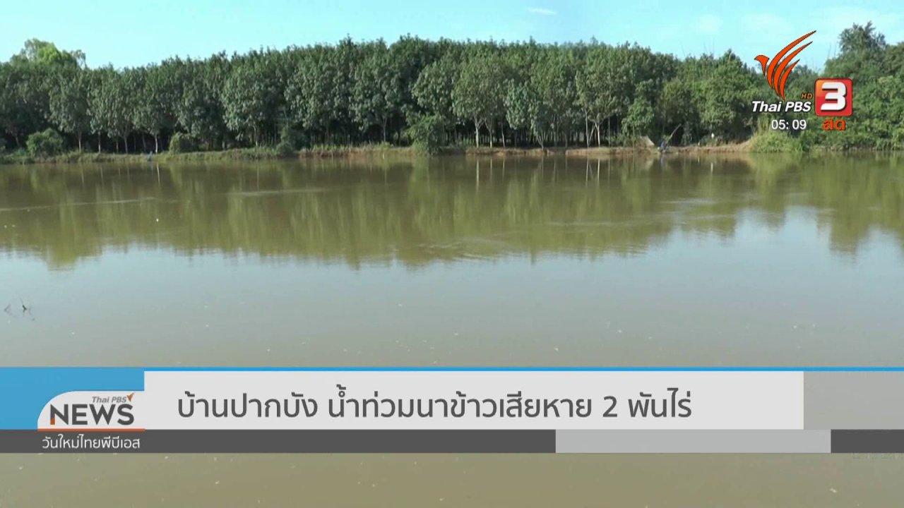 วันใหม่  ไทยพีบีเอส - บ้านปากบัง น้ำท่วมนาข้าวเสียหาย 2 พันไร่
