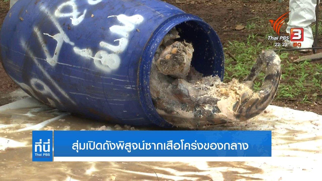 ที่นี่ Thai PBS - สุ่มพิสูจน์ซากเสือโคร่งของกลาง