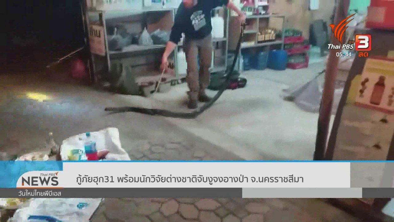 วันใหม่  ไทยพีบีเอส - กู้ภัยฮุก 31 พร้อมนักวิจัยต่างชาติจับงูจงอางป่า จ.นครราชสีมา