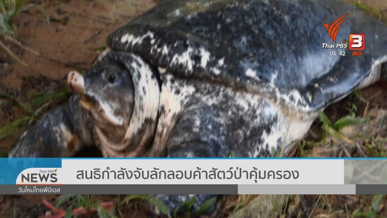 วันใหม่  ไทยพีบีเอส - สนธิกำลังจับลักลอบค้าสัตว์ป่าคุ้มครอง