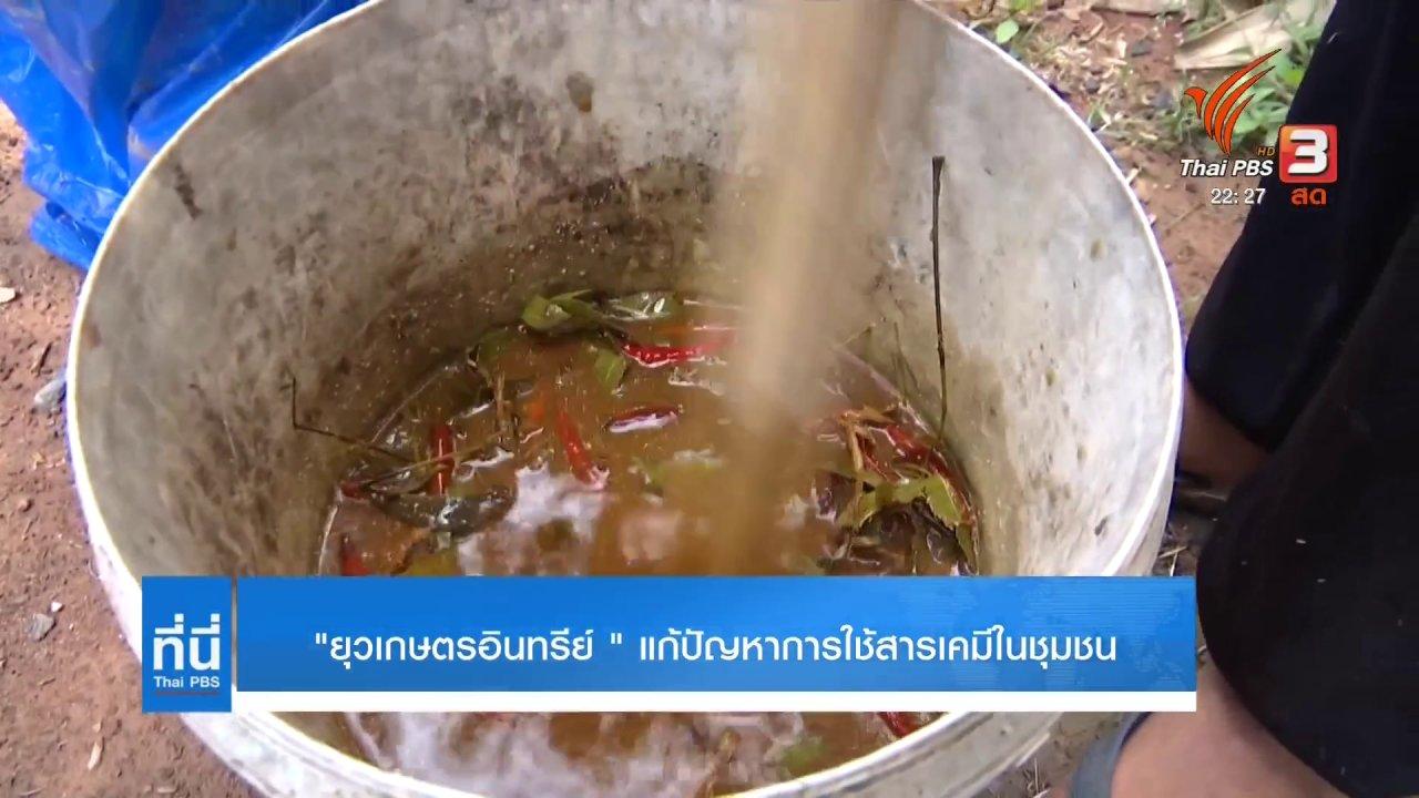 """ที่นี่ Thai PBS - """"ยุวเกษตรอินทรีย์"""" แก้ปัญหาการใช้สารเคมีในชุมชน"""