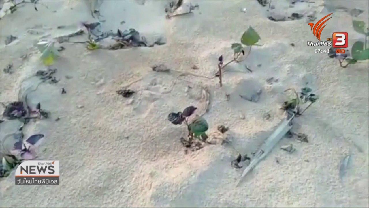 """วันใหม่  ไทยพีบีเอส - C-site Report : """"นาทราย"""" ผลกระทบหลังน้ำลด จ.ร้อยเอ็ด"""