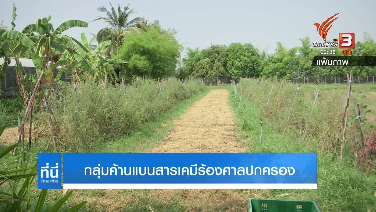 ที่นี่ Thai PBS - กลุ่มค้านแบนสารเคมีเกษตรร้องศาลปกครอง