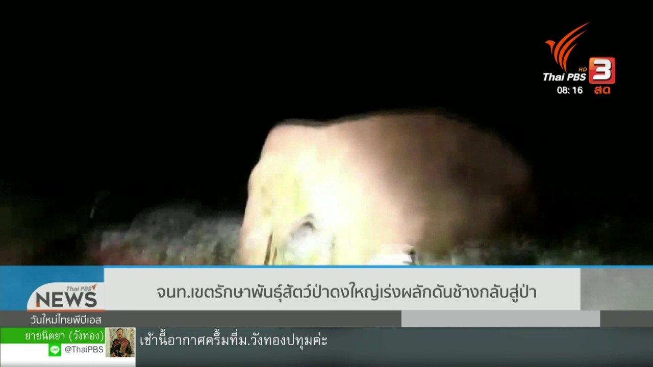 วันใหม่วาไรตี้ - จับตาข่าวเด่น : จนท.เขตรักษาพันธุ์สัตว์ป่าดงใหญ่ เร่งผลักดันช้างกลับเข้าป่า