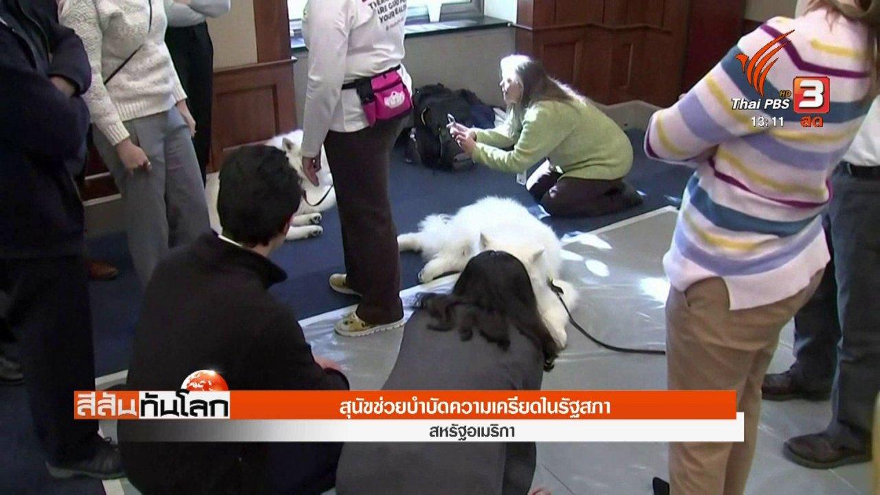 สีสันทันโลก - สุนัขช่วยบำบัดความเครียดในรัฐสภา