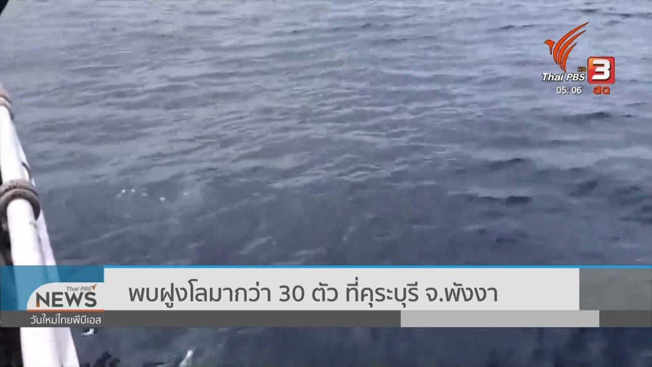 วันใหม่  ไทยพีบีเอส - พบฝูงโลมากว่า 30 ตัว ที่คุระบุรี จ.พังงา