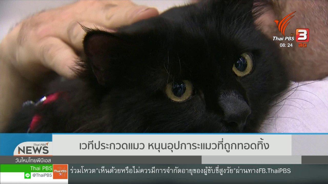 วันใหม่วาไรตี้ - จับตาข่าวเด่น : เวทีประกวดแมว หนุนอุปการะแมวที่ถูกทอดทิ้ง