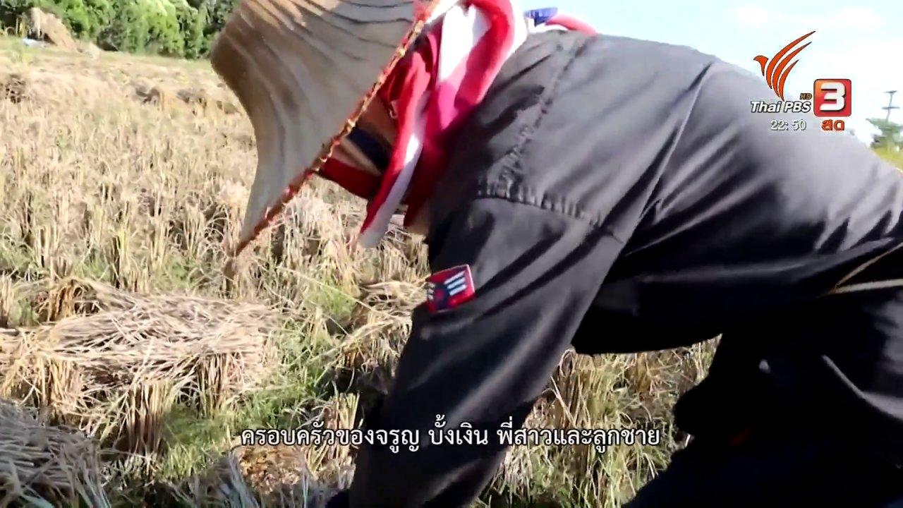 ที่นี่ Thai PBS - เก็บเกี่ยวข้าวด้วยมือ วิถีชาวนาดั้งเดิม