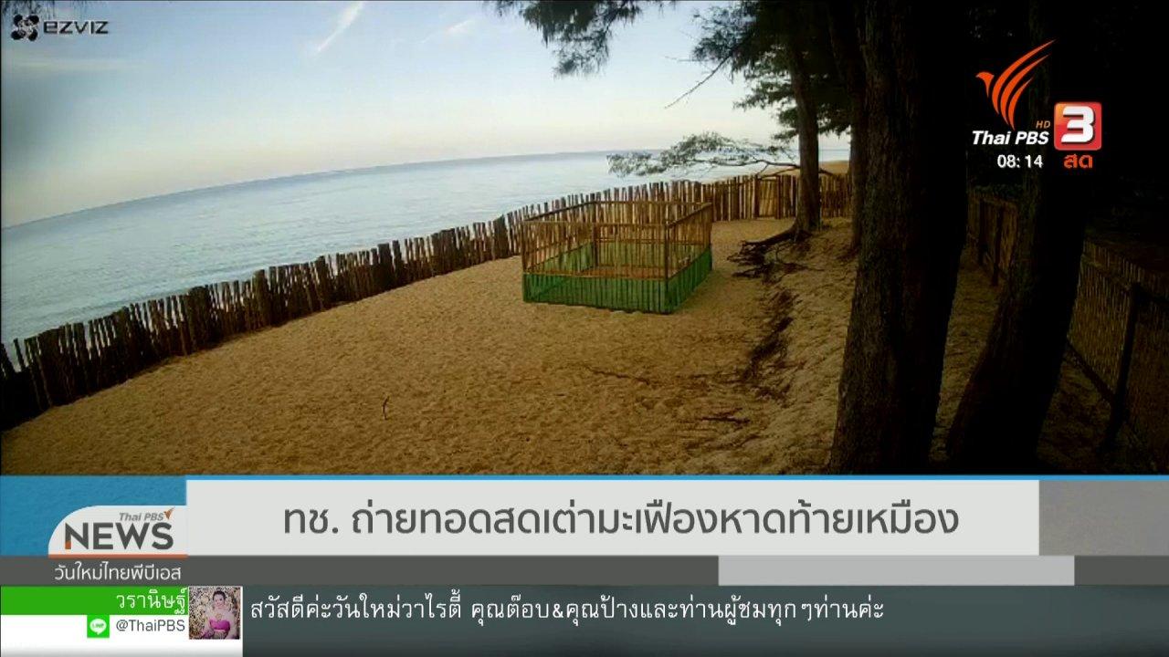วันใหม่วาไรตี้ - จับตาข่าวเด่น : ทช. ถ่ายทอดสดเต่ามะเฟือง หาดท้ายเหมือง
