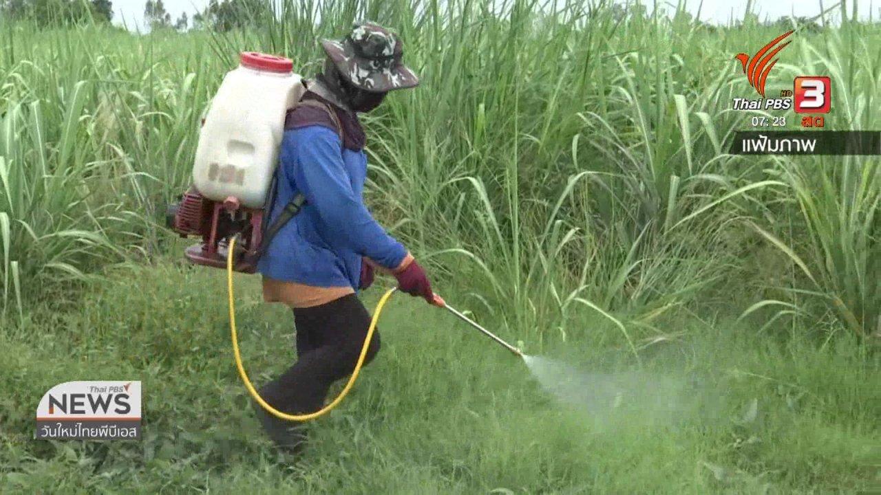 วันใหม่  ไทยพีบีเอส - ชั่วโมงทำกิน : เครือข่ายเกษตรกรเตรียมเคลื่อนไหวค้านแบนสารเคมีเกษตร