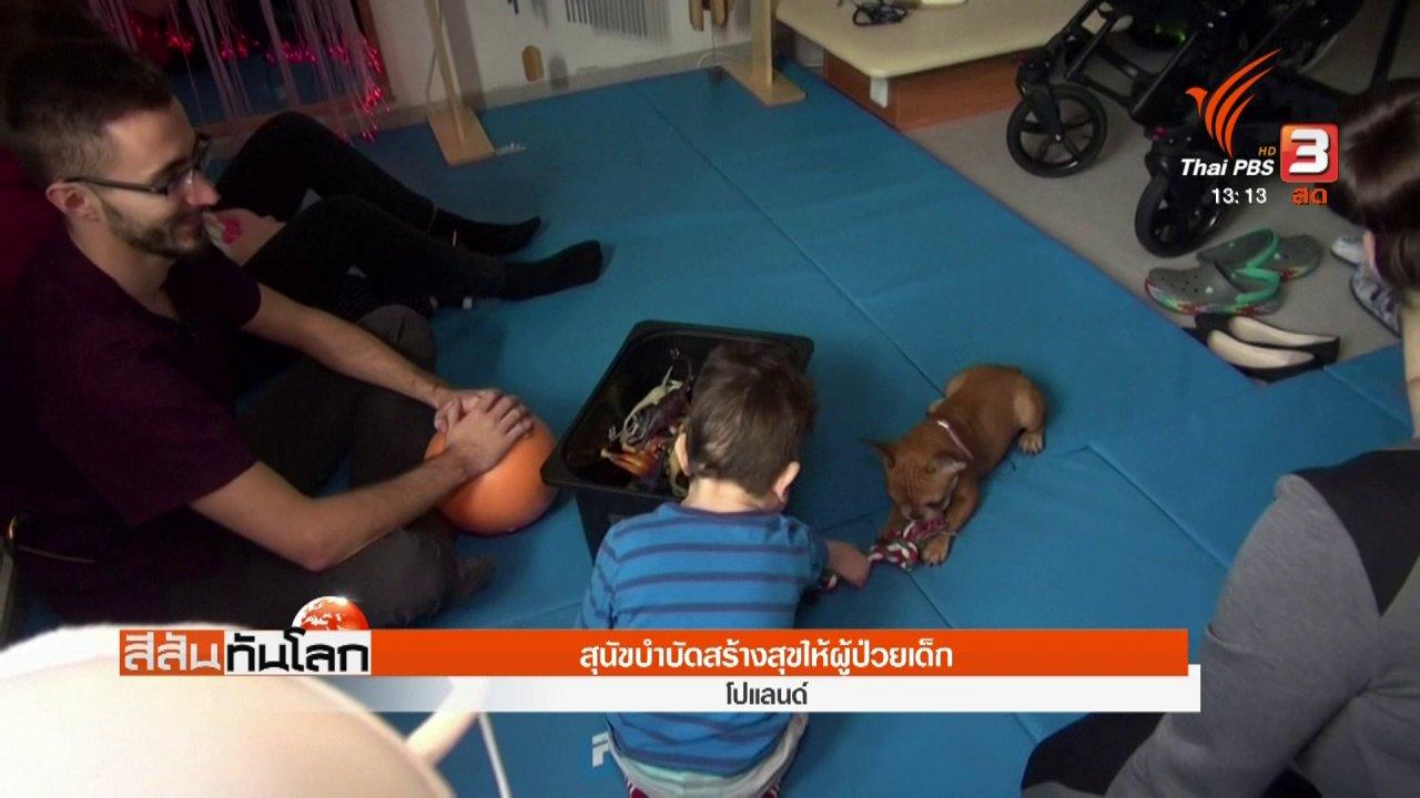 สีสันทันโลก - สุนัขบำบัดสร้างสุขให้ผู้ป่วยเด็ก