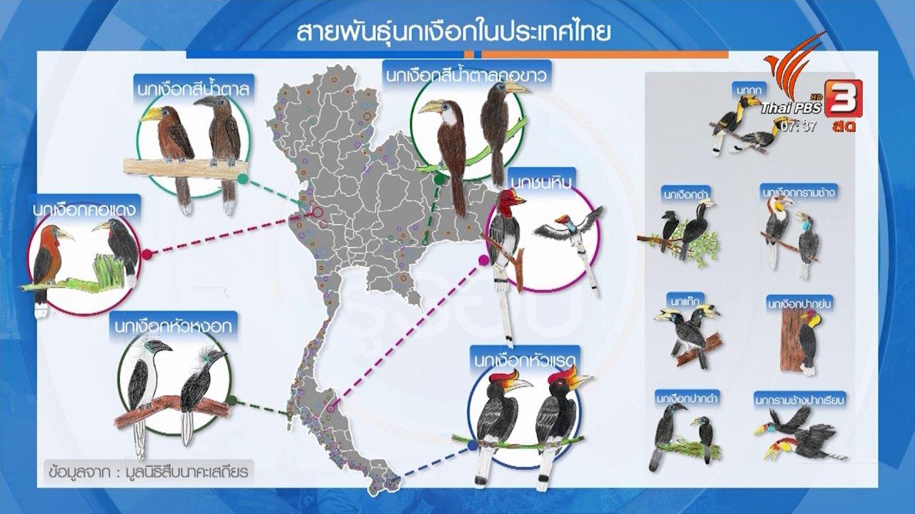 วันใหม่  ไทยพีบีเอส - กินอยู่รู้รอบ : วันรักนกเงือก